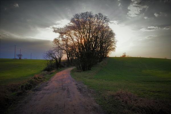 POLAND - Nature\'s Impressions No.32 by PentaxBro