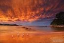 Avoca Beach Mammalus Sunset by kmorgan3