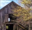 Barn Windows by Joline