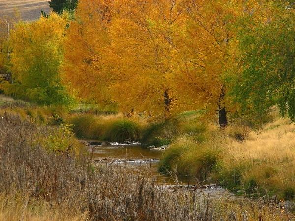 Autumn 3 by DevilsAdvocate
