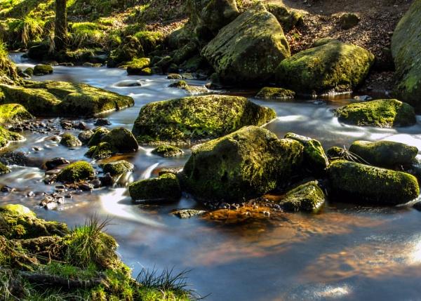 Padleyin Derbyshire by mmart
