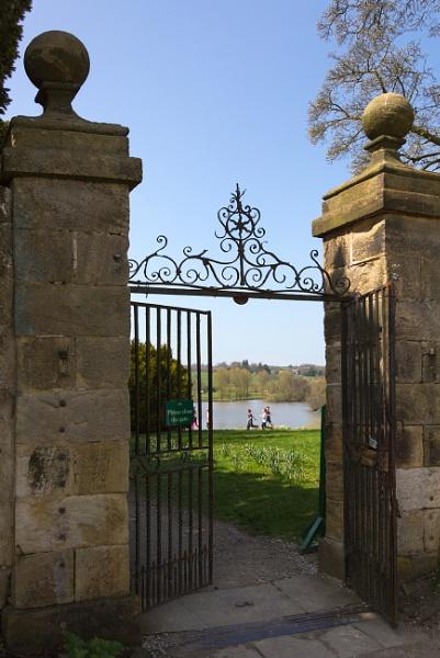 Through the  gate by xwang