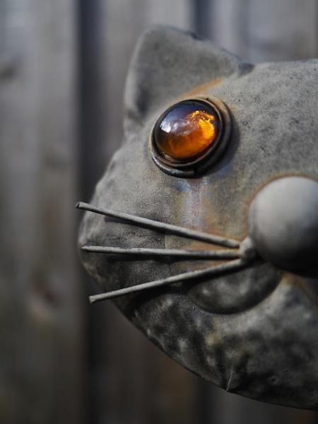 Catseye by sophym