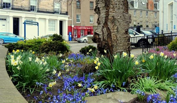 Perth City Garden, Scotland.
