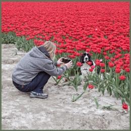 Flowers love....Spaniels