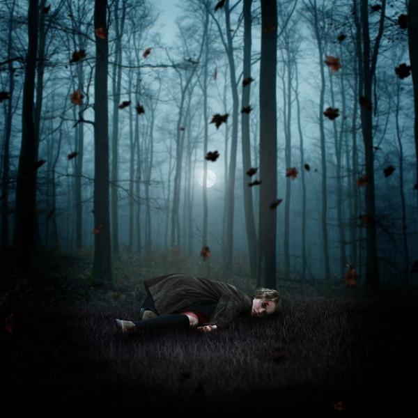 The Dark Hollow. by Scaramanga