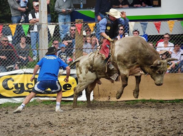 Methven Rodeo by peterthowe