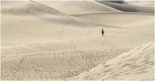A Walk 9n the Desert by Matt Johnston