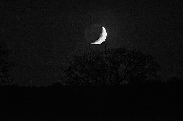 moon by rocky41