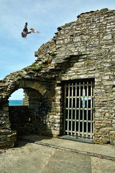 Aberystwyth by Evertonian