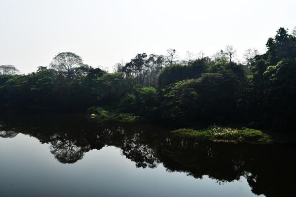 Chaliyar River, Nilambur, Kerala, India by aliathik
