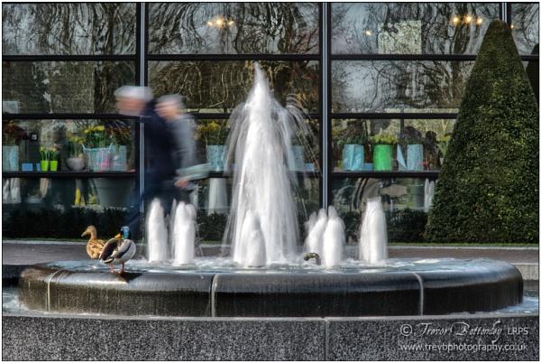 Dancing Water by TrevBatWCC