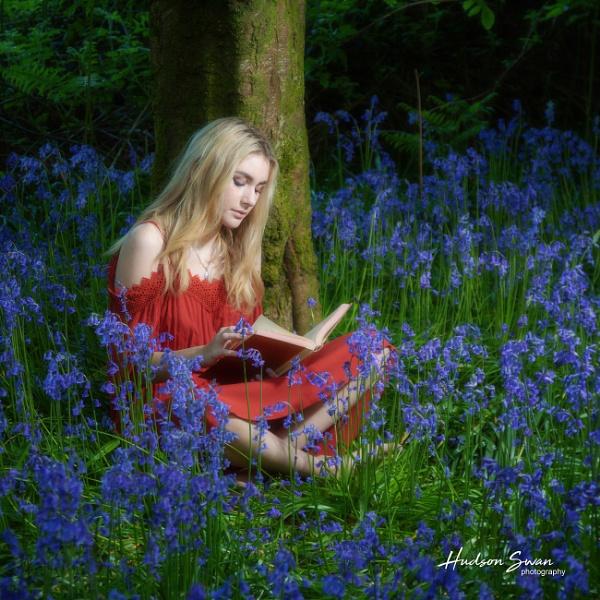 Bluebell Woods by sunsetskydancer