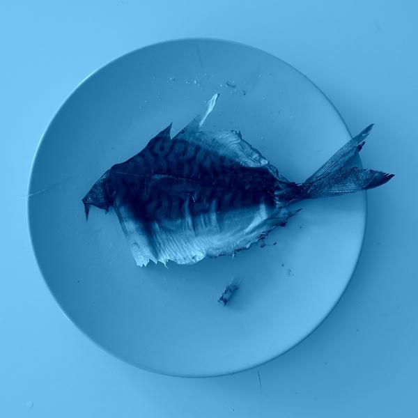 Blue fish by josa