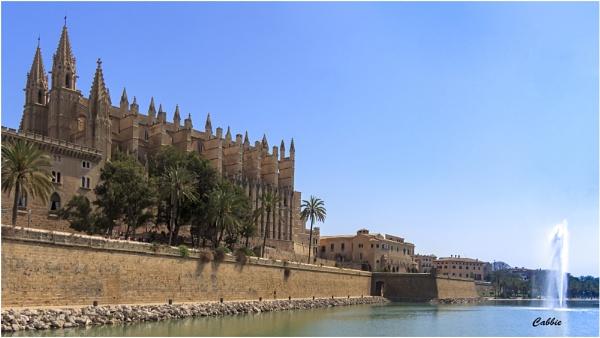 Palma by cabbie