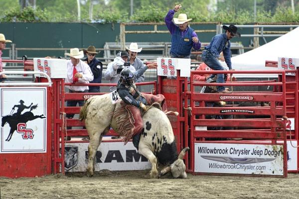 Bull Riding Cloverdale Rodeo