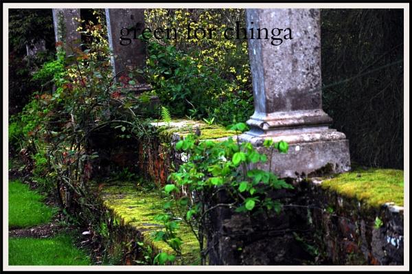green by williamsloan