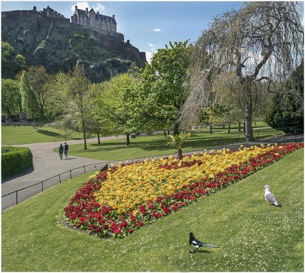 Princes Street Gardens & Castle by mac