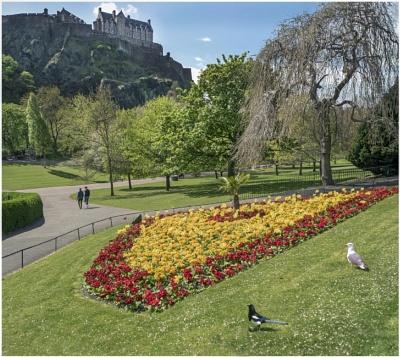 Princes Street Gardens & Castle