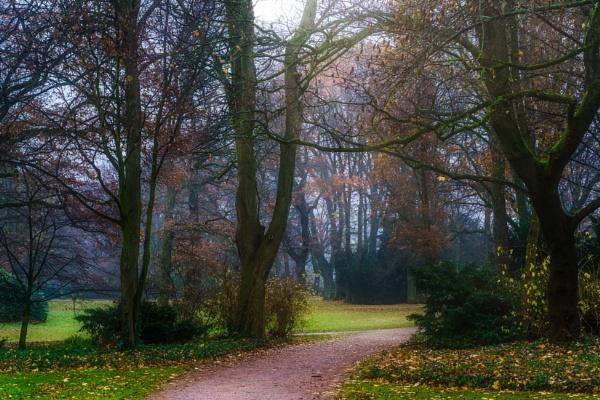 Autumn park by rninov