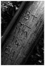 Telephone Pole Numbers