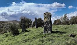 Colmeallie stones