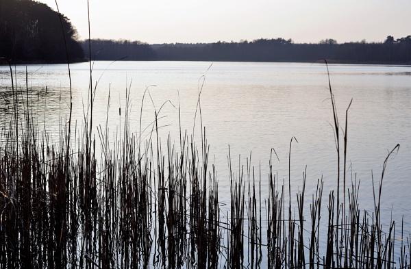 POLAND - Nature\'s Impressions No.59 by PentaxBro