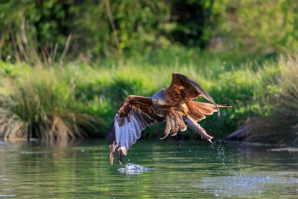 Gone fishing by Kev8990