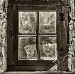 Cobwebs on the window.