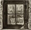 Cobwebs on the window. by franken