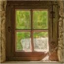 Cobwebs on the window - 2. by franken