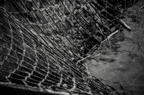 Hatchery netting.