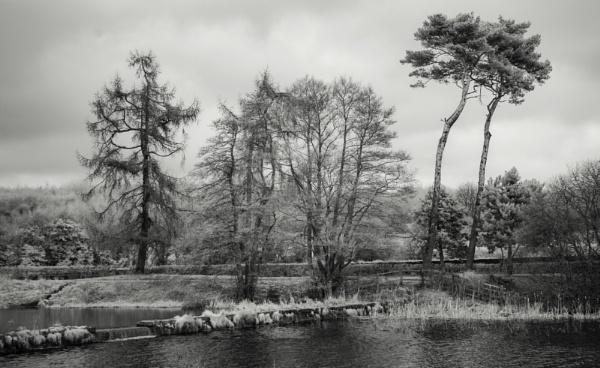 Thorton Reservoir.