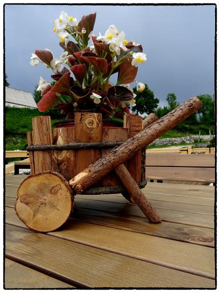 Flowerpot by nklakor