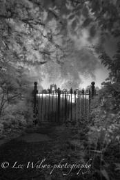 through the kissing gate