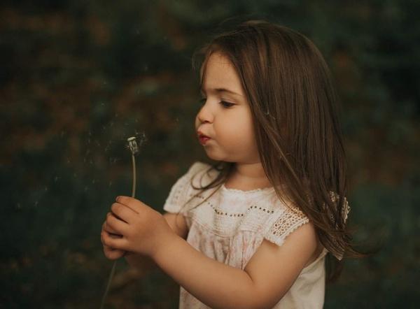 Dandelions by RebeccaR