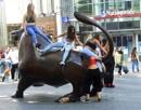 Bull Rush by happysnapperman