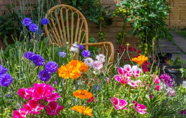garden chair by jimlad
