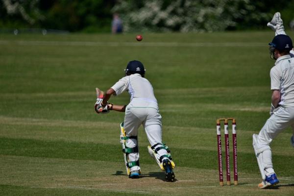 Harpenden Cricket by peterthowe
