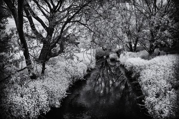 Blackbrook by RLF