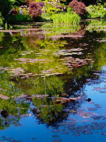 Monet\'s Garden \'Monet\'d\' by MadVillPics