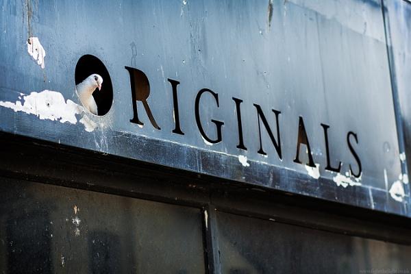 Rhyl Originals by russftl
