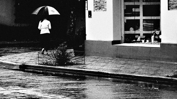 Muchacha con paraguas. by femape