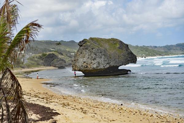 a carribean beach by realspeed