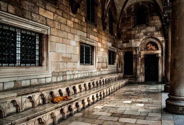 Sleeping Cat - Dubrovnik by Zydeco_Joe