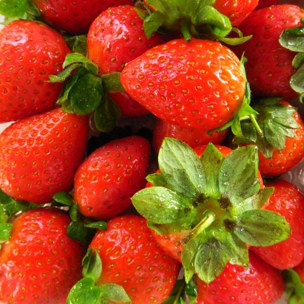 strawberries by janetj