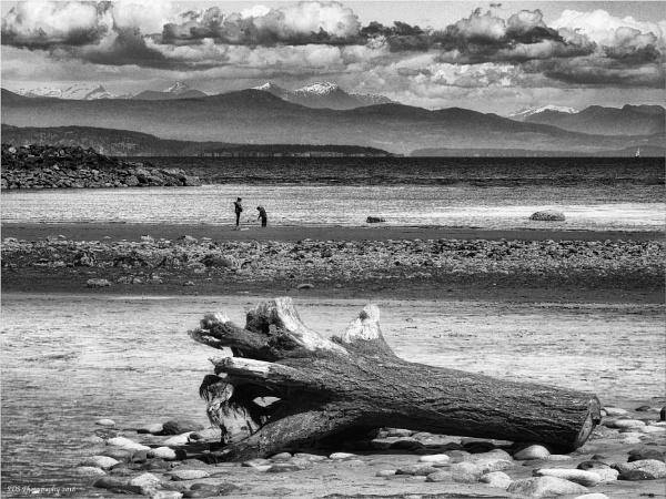 French Creek Beach by Daisymaye