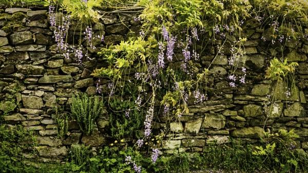 Hanging Gardens by RLF