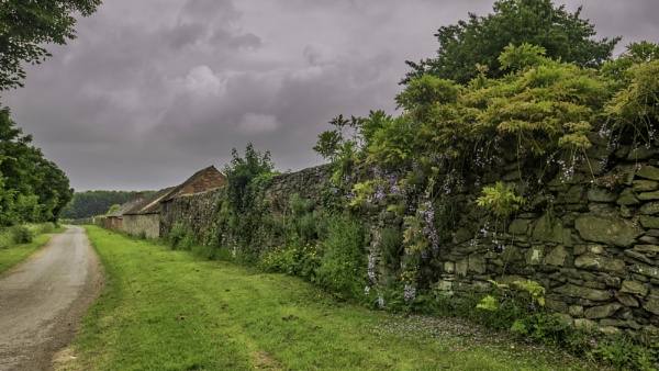 An English Country Lane by RLF