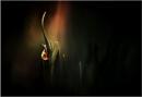 Sisyphus by Cpt_Hun